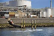 Nederland, Rotterdam, 24-10-2008Lozingspunt van afvalwater van een fabriek van Shell in de Botlek.Foto: Flip Franssen/Hollandse Hoogte