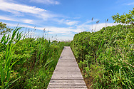 Pier into Mecox Bay, 258 Horsemill Lane, Water Mill, NY.  Listowel Garden, Parrish Art Museum Landscape Pleasure 2017 garden tour