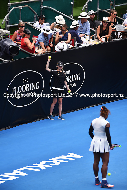 ASB Bank ball kid during the ASB Classic WTA Womens Tournament Day 2. ASB Tennis Centre, Auckland, New Zealand. Tuesday 3 January 2017. ©Copyright Photo: Chris Symes / www.photosport.nz