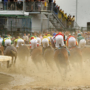 The 20-horse field charges around the first turn before Calvin Borel and Super Saver win the 136th running of the Kentucky Derby at Churchill Downs Saturday May 1, 2010. Photo by David Stephenson