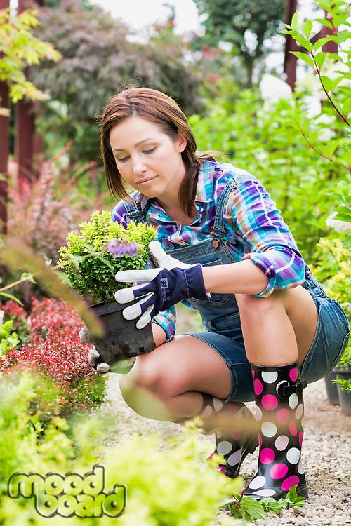 Portrait of female gardener examining plants on pot