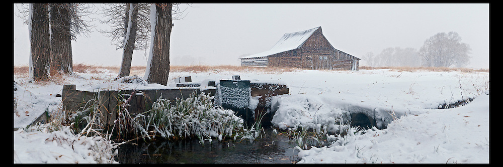 An early snow storm pounds the iconic Moulton Barn in Grand Teton National Park.