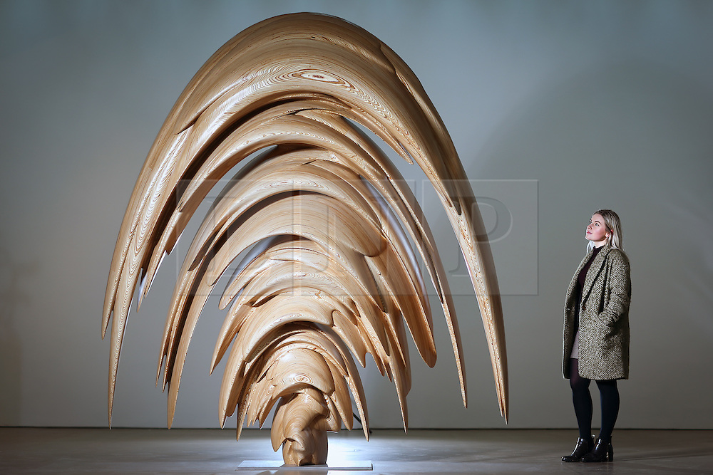 © Licensed to London News Pictures. 02/03/2017. Wakefield UK. Millie Carroll looks over Tony Cragg's wood sculpture Spring at Yorkshire Sculpture Park today. Tony Cragg's largest UK exhibition opens today at the Yorkshire Sculpture park, A Rare Category of Objects, the exhibition features more than 170 sculptures & works on paper drawn from nearly five decades of Cragg's practice, the exhibition demonstrates the artist's pioneering & continued mastery of materials.  Photo credit: Andrew McCaren/LNP