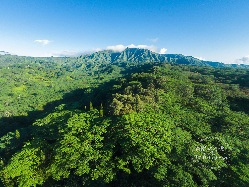 Aerial photograph of Mt Makaleha, Wailua, Kauai, Hawaii