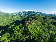 Aerial photograph of Mt Makaleha, Wailua, Kauai, Hawaii