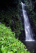 Sao Nicolau (Saint Nicholas) waterfall is the highest in Sao Tome island