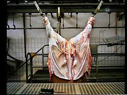 2012.Binefar, Huesca, Spain. Meat in the slaughterhouse ©Carmen Secanella