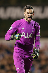 Hugo Lloris of Tottenham Hotspur celebrates after Christian Eriksen scores a goal to make it 1-1 - Photo mandatory by-line: Rogan Thomson/JMP - 07966 386802 - 30/11/2014 - SPORT - FOOTBALL - London, England - White Hart Lane - Tottenham Hotspur v Everton - Barclays Premier League.