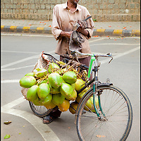A Coconut Seller Transports His Coconut On His Bicycle in Bengaluru, India