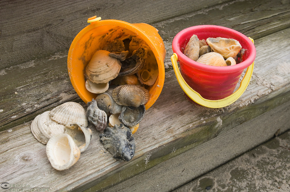 buckets filled with seashells