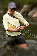 A woman enjoying flyfishing during summer on the Big Thompson River near estes Park Colorado.