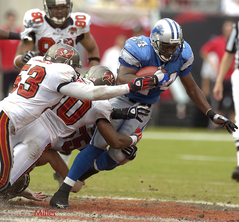 Oct. 5, 2005; Tampa, FL, USA;  Detroit Lions running back #24 Shawn Bryson is brought down by Tampa Bay Buccaneers defender #53 Shelton Quarles and a host of Buccaneers during the second half of the Lions game against the Bucs at Raymond James Stadium. The Bucs won the game 17-13.          ©2005 Scott A. Miller..©2005 Scott A. Miller