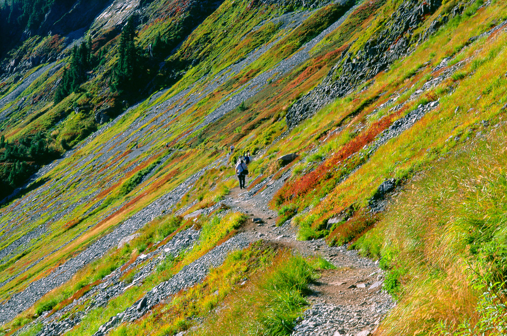 Hiker on Chain Lakes Trail, Mt. Baker-Snoqualmie National Forest, Washington, US