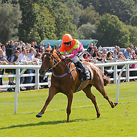 Lingfield 12th September