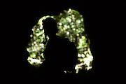 Lima Duarte_MG, Brasil. ..Parque Estadual do Ibitipoca em Lima Duarte, Minas Gerais, e administrado pelo Instituto Estadual de Florestas...The Ibitipoca State Park in Lima Duarte, Minas Gerais, Its is managed by the Forest State Institute...Foto: LEO DRUMOND / NITRO