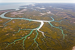 An aerial view of the mangroves near Point Torment north of Derby