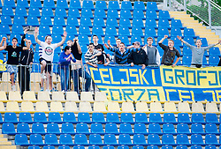 Celjski grofje, Supporters of Celje during football match between NK Celje and NK Aluminij in 2nd leg of semifinal of Slovenian Cup 2012/2013, on May 8, 2013, in Arena Petrol, Celje, Slovenia. (Photo By Vid Ponikvar / Sportida.com)