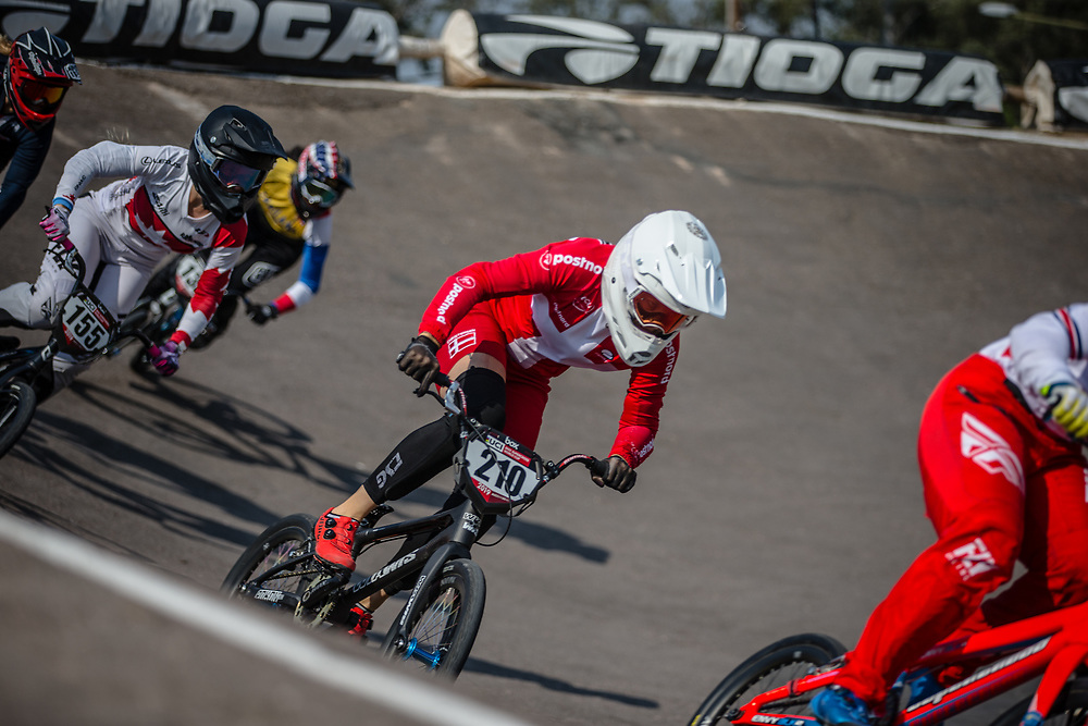 #210 (CHRISTENSEN Simone Tetsche) DEN at Round 10 of the 2019 UCI BMX Supercross World Cup in Santiago del Estero, Argentina