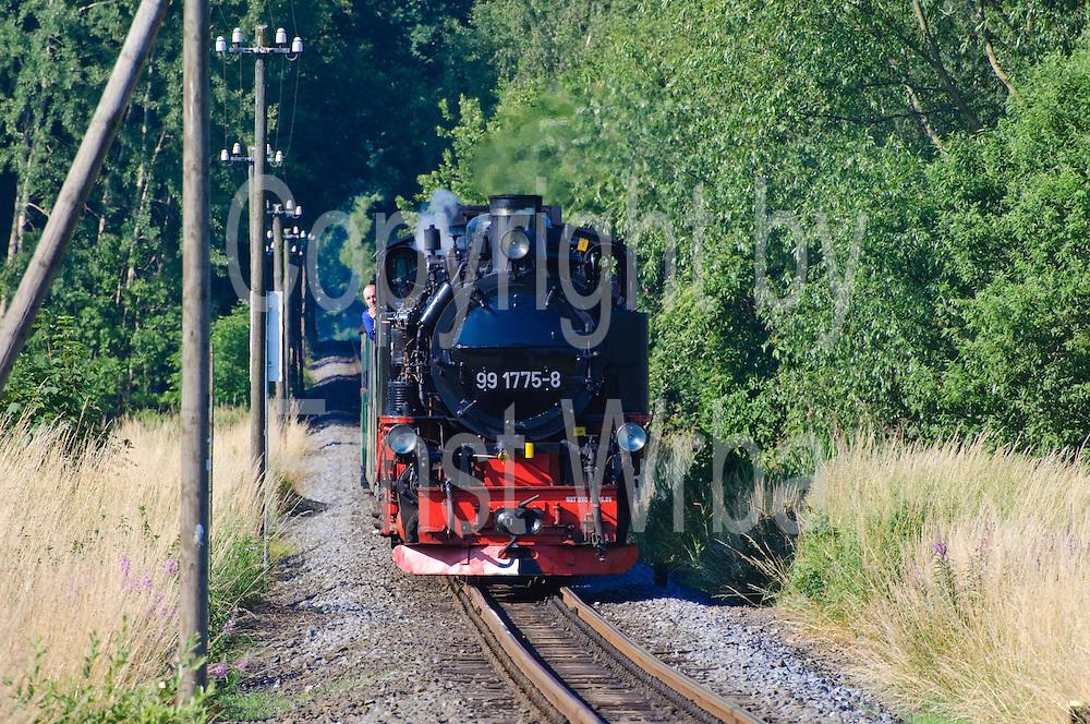 """Moritzburg, Lößnitzgrund-Dampfeisenbahn """"Lößnitzdackel"""" Sachsen, Deutschland. .Moritzburg, steam train, Saxony, Germany."""