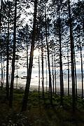 Ruby Beach - Olympic National Park - Washington State