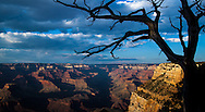 Photos of the Grand Canyon