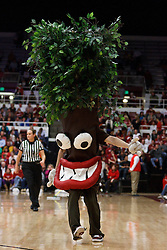 January 20, 2011; Stanford, CA, USA;  The Stanford Cardinal mascot performs during a time out during the first half against the UCLA Bruins at Maples Pavilion.  Stanford defeated UCLA 64-38.
