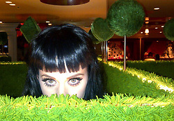"""Katy Perry releases a photo on Twitter with the following caption: """"""""Bout to sleigh in an hour 🎅🏻 https://t.co/msozYzVM4W"""""""". Photo Credit: Twitter *** No USA Distribution *** For Editorial Use Only *** Not to be Published in Books or Photo Books ***  Please note: Fees charged by the agency are for the agency's services only, and do not, nor are they intended to, convey to the user any ownership of Copyright or License in the material. The agency does not claim any ownership including but not limited to Copyright or License in the attached material. By publishing this material you expressly agree to indemnify and to hold the agency and its directors, shareholders and employees harmless from any loss, claims, damages, demands, expenses (including legal fees), or any causes of action or allegation against the agency arising out of or connected in any way with publication of the material."""