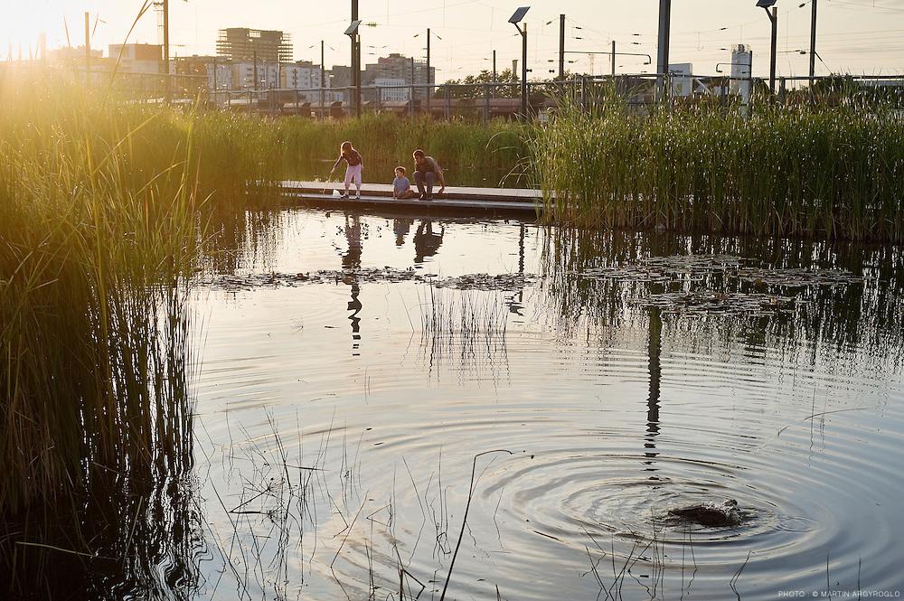 Parc Clichy-Batignolles - Martin Luther King, Paris, 2009..Le parc Clichy-Batignolles est le fruit d'une large réflexion commencée en 2002. La paysagiste Jacqueline Osty et son équipe travaillent depuis 2004 à la conception de ce parc, en deux grandes phases.La 1ère phase de 43 000m² a ouvert en octobre 2007 et s'est achevée en décembre 2008. Il s'agit de la partie la plus révélatrice de la démarche environnementale du parc et aussi de la plus végétalisée. La 2ème phase qui portera la surface totale du parc à 100 000 m² est programmée ultérieurement.Le parc Clichy-Batignolles se décline autour de 3 thèmes : les saisons, le sport et l'eau.Le jardin du rail (petit jardin thématique en mémoire du site), ses chaises longues, l'aire de jeux pour les enfants et les terrains de sports constituent l'espace détente.Au centre du parc, une grande pelouse  d'environ 1ha est vallonnée : des buttes de 1 à 4 mètres de hauteur rappellent un muscle de la jambe. Ces courbes contrastent avec l'aspect rectiligne des allées. Au sommet de chaque butte, une plate-forme permet d'observer les ambiances végétales et les aires de jeux.Le jardin de prunus, vers l'impasse Chalabre, est une zone en triangle. Elle est composée de petites buttes d'environ 1 mètre de hauteur et d'arbres à fleurs. La placette située à cette entrée du parc est ornée de rails de chemin de fer incrustés dans le sol. Par leur géométrie particulière, ces pièces de métal guident le visiteur vers l'intérieur du parc.Deux zones d'aires de jeux pour les enfants et les adolescents, en particulier un skate parc, un terrain de basket ball, une aire de « balle au mur » et une aire de jeux de ballon, sont encadrées par des arbustes et des arbres à fleurs. Ils forment une végétation dense.Entre les deux zones, une bande de jardins remonte depuis la rue Cardinet jusqu'au bassin biotope. Elle est composée d'un mail de magnolias, du jardin du rail et de pelouses ouvertes plantées d'arbres de hautes tiges. Les trois derniers aménageme