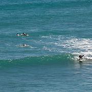 Surfing. San Jose del Cabo. BCS, Mexico.