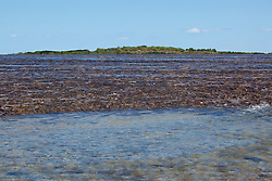 Shallows on the edge of Montgomery Reef.  Water cascades off the reef as the tide falls.