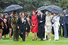 Wellington-Royal Visit, Official welcome at Government House