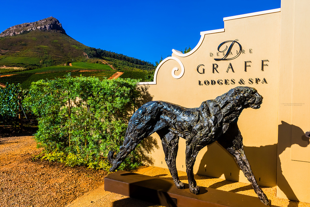 Ten bronze sculptures of cheetahs by Dylan Lewis are displayed in situ, Delaire Graff Wine Estate atop Helshoogte Pass, near Stellenbosch, Cape Winelands (near Cape Town), South Africa.