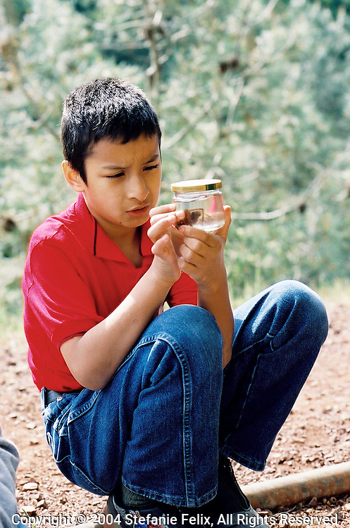 2nd grader examines preserved tarantula in a jar during field trip on Mt. Diablo.