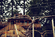 Augustino Vineyards at Rock'n Ranch