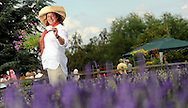 Pictured holding flowers and drinking English tea at The Lavender Patch in Hilton, Derbyshire is Annie Haigh from Garden Living based in Brassington.