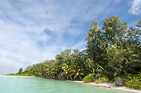 A small palm covered island in the St Joseph Atoll, D'Arros Island and St Joseph Atoll, Amirantees, Seychelles,