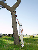Golfer retrieving ball from tree