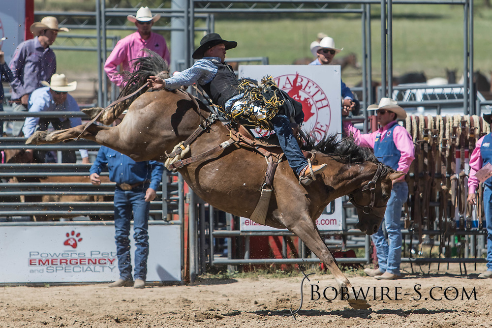 Saddle bronc rider Brady Thurston rides Summit Pro Rodeo's M3 Miss Independent in the first performance of the Elizabeth Stampede on Saturday, June 2, 2018.