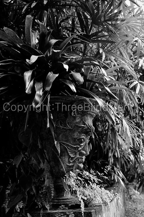 Lunuganga. Geoffrey Bawa's garden near Bentota. Pot designed by Donald Friend.