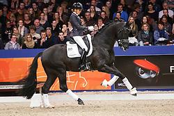 Scholtens Emmelie (NED) - Desperado<br /> KWPN Stallion Selection - 's Hertogenbosch 2014<br /> © Dirk Caremans