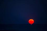 Full moon<br /> Little St Simon's Island, Barrier Islands, Georgia<br /> USA