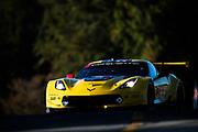 October 11-13, 2018: IMSA Weathertech Series, Petit Le Mans: 4 Corvette Racing, Corvette C7.R, Oliver Gavin, Tommy Milner
