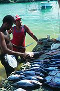 Fisehermen, Grand Cayman, Cayman Islands, British West Indies,