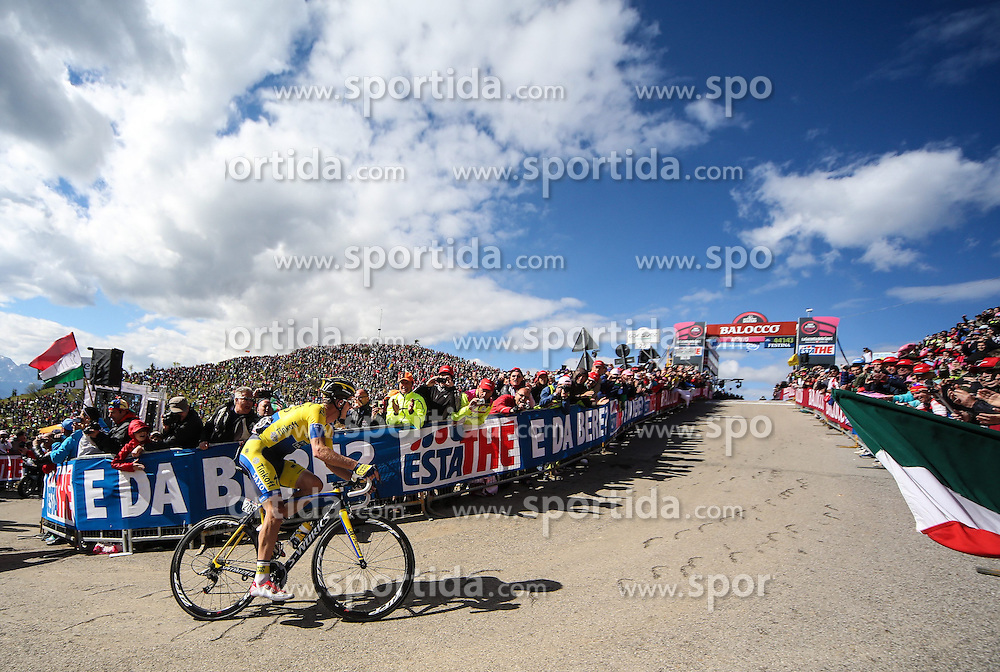 31.05.2014, Monte Zoncolan, ITA, Giro d Italia 2014, 20. Etappe, Mantiago nach Monte Zoncolan, im Bild der Etappensieger Michael Rogers, AUS (#209, Team Tinkoff-Saxo) // stage winner Michael Rogers, AUS (#209, Team Tinkoff-Saxo) during Giro d' Italia 2014 at Stage 20 from Mantiago to Monte Zoncolan, Italy on 2014/05/31. EXPA Pictures © 2014, PhotoCredit: EXPA/ M. Huber