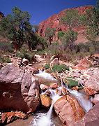 Deer Creek Canyon, Colorado River mile 135, Grand Canyon National Park, Arizona, USA; 7 May 2008; Pentax 67II, Velvia