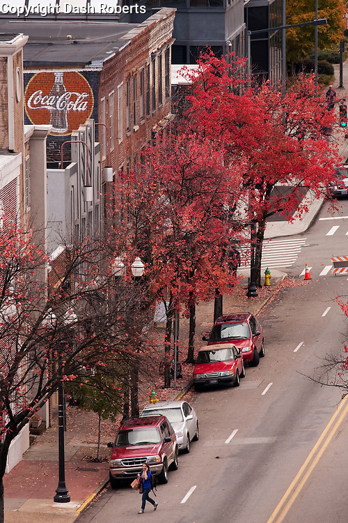 Fall colors on Gay Street in downtown Knoxville.