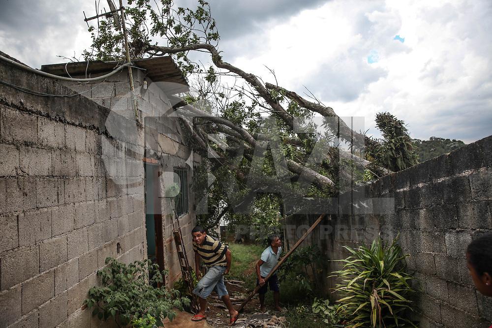 Uma árvore de grande porte caiu sobre uma casa no Grajaú, zona sul de São Paulo, na madrugada desta quarta-feira (25). Fortes ventos causaram a queda, e não houve vitimas. Douglas Pingituro / Brazil Photo Press)