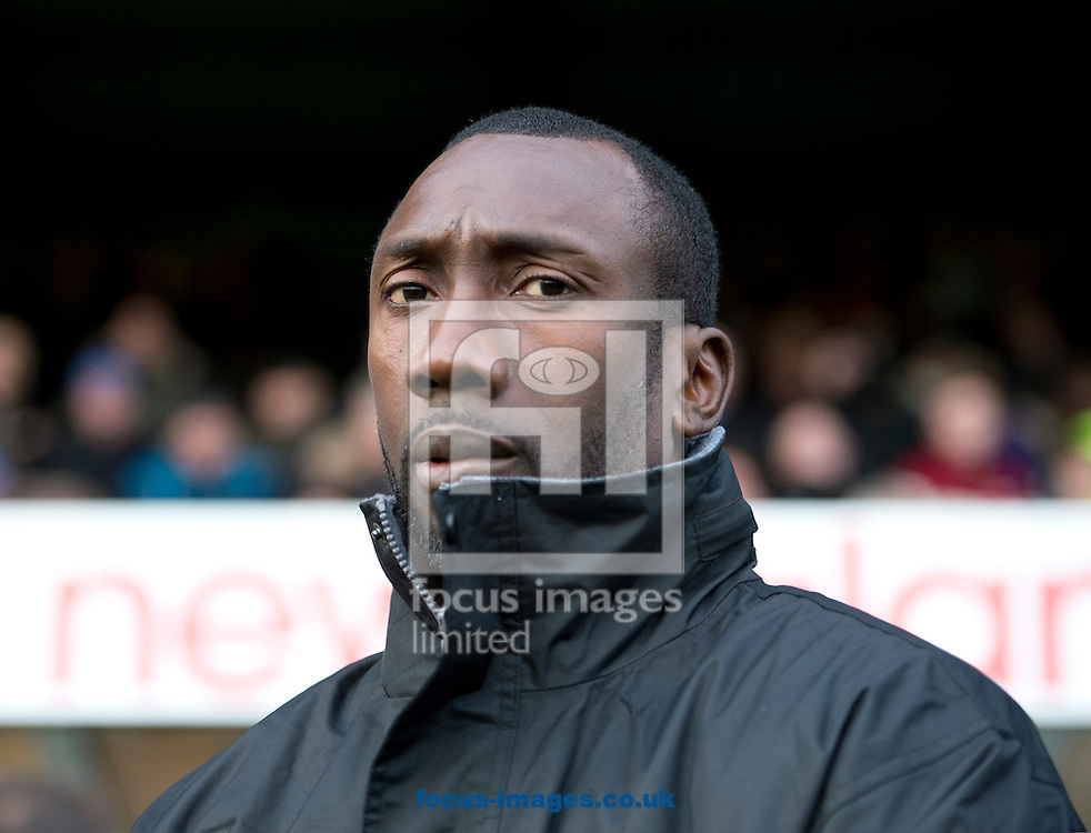 Burton Albion manager Jimmy Floyd Hasselbaink before the Sky Bet League 1 match at Gigg Lane, Bury<br /> Picture by Russell Hart/Focus Images Ltd 07791 688 420<br /> 21/11/2015