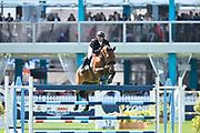 Kent FARRINGTON (USA) riding GAZELLE during the International Show Jumping of La Baule 2018 (Jumping International de la Baule), on May 18, 2018 in La Baule, France - Photo Christophe Bricot / ProSportsImages / DPPI