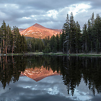 Mt. Gibbs at sunset reflecting in a small pond adjacent to the Tioga Pass on the east side of Yosemite National Park.